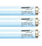 Cheetah F71 9.5 Bi-Pin 100W