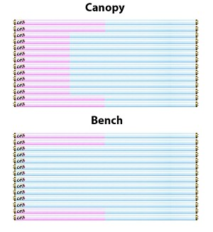 28 Lamp Full Body Kit