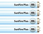 Wolff System Sunfire Plus F71T12 100W Bipin - Hot!